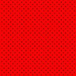 レッド・ブラック#01